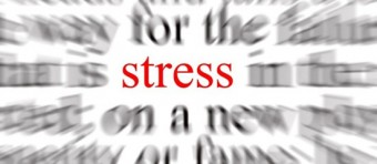 stresssed-out-e1379524619177[1]
