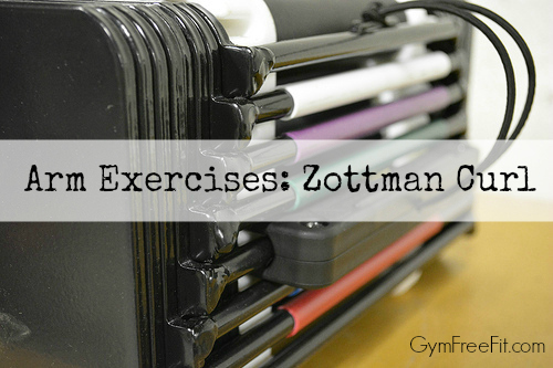 arm exercises zottman curl