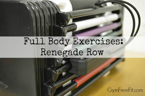 full body exercises renegade row